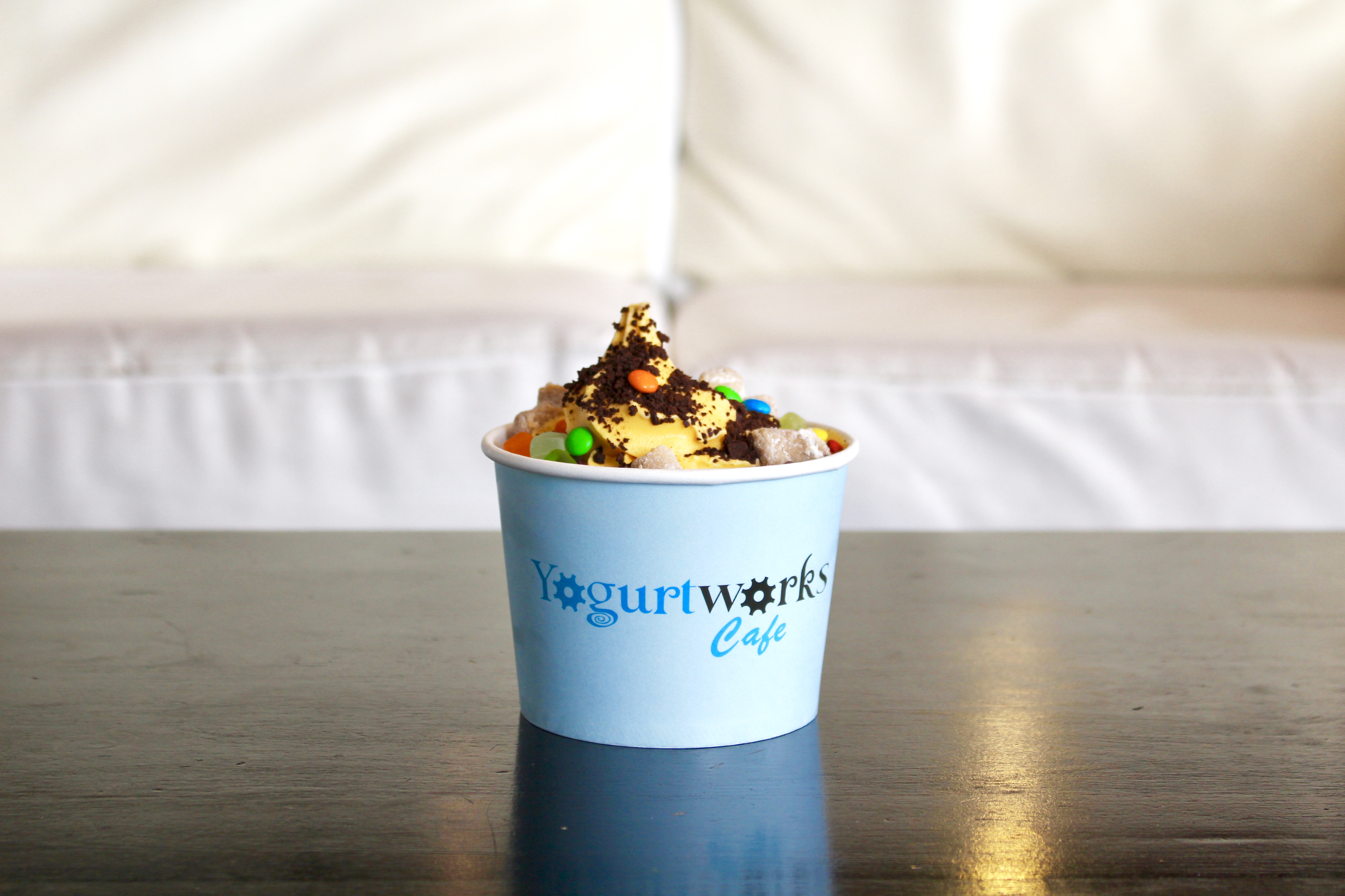 Yogurtworks Cafe Frozen Yogurt Shop In Ephrata Pa